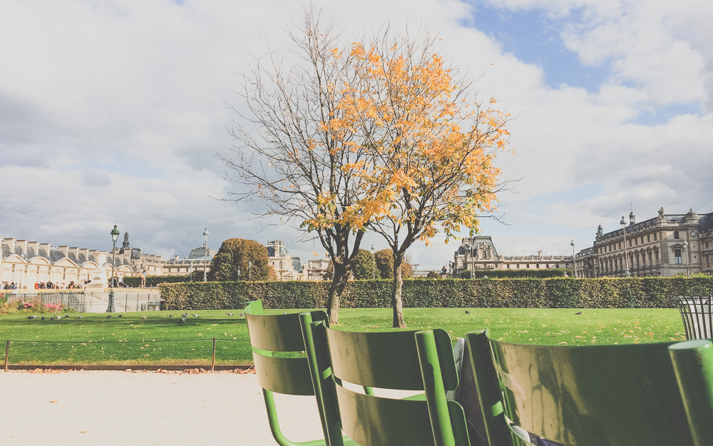 Tuileries Garden in the Fall, Paris, France